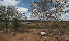 Jaguaretama - Jaguaretama-CE-Caatinga e o lago-Foto:Charles Northrup