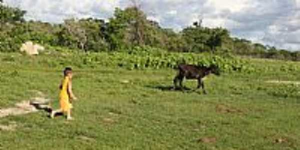 Jaguaribara foto Reginaldo Granja