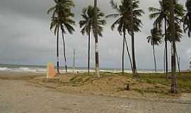 Piacabuçu - Piacabuçu-AL-Coqueiros na orla da praia-Foto:Leandro Durães