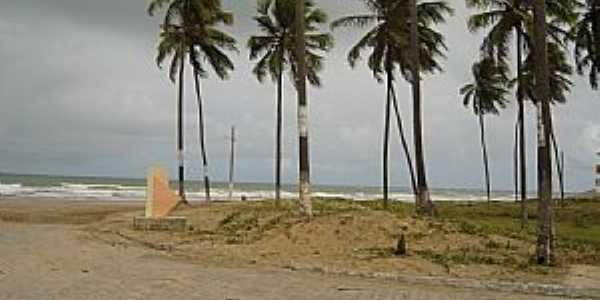 Piacabu�u-AL-Coqueiros na orla da praia-Foto:Leandro Dur�es