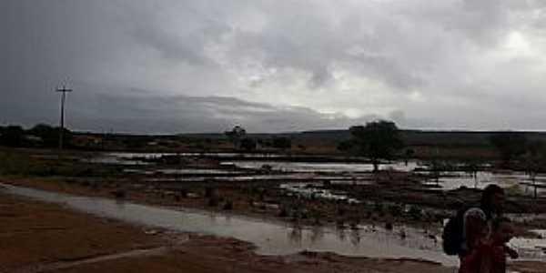 Lagoa dos Crioulos-CE-Açudes e barreiros-Foto:potenginainternet.com