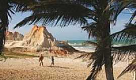 Majorl�ndia - Coqueiros e fal�sias na praia de Majorl�ndia-CE-Foto:nimra mhad