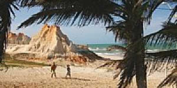 Coqueiros e fal�sias na praia de Majorl�ndia-CE-Foto:nimra mhad