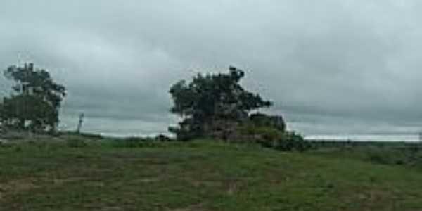 Pedra Histórica em Mel por edsonkpalacio