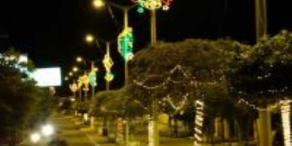 avenida de Milh�, Por Janny R�lyda Braga
