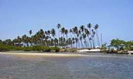 Poxim - Coqueiros na Praia de Pituba em Poxim-Foto:Edmur Resende