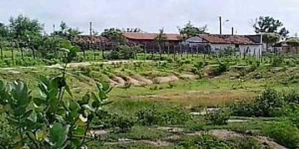 Nova Betânia-CE-Vista parcial do Povoado-Foto:luoman