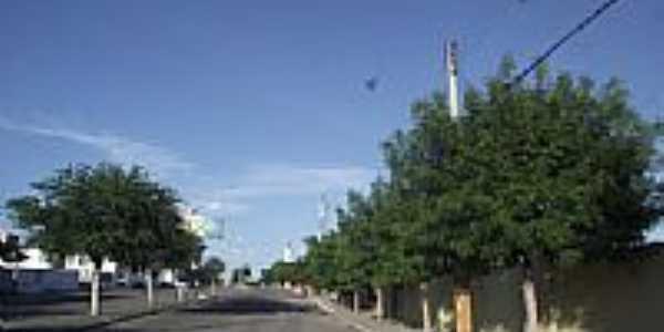 Avenida que corta a cidade de Palhano-Foto:Jairo SilaS