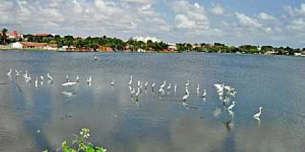 Lagoa de Parangaba  - por WLuiz