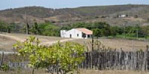 Casa área rural-Foto:Natty25