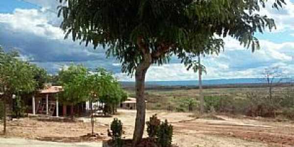 Santa Tereza-CE-Entrada do Distrito-Foto:Facebook