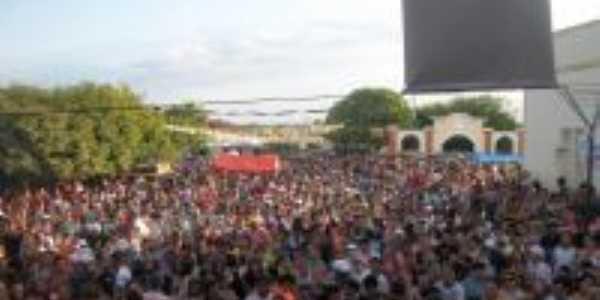 carnaval 2012 São José, Por Professora Judithe
