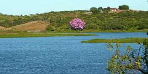 São Miguel-CE-Vista do rio e região-Foto: JPZootecnista