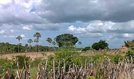 Targinos - Targinos-CE-Área rural do Povoado-Foto:Mauricio Uchoa