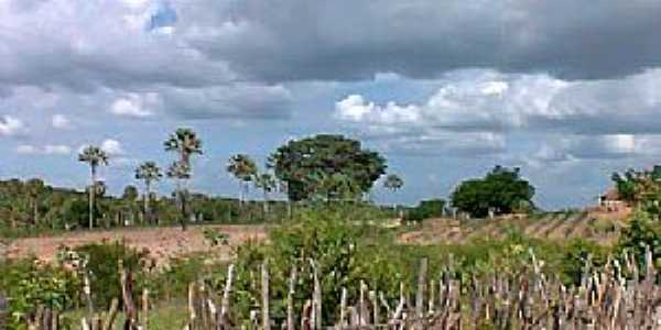 Targinos-CE-Área rural do Povoado-Foto:Mauricio Uchoa