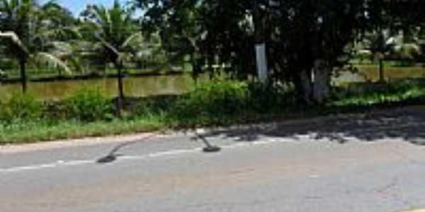 Rodovia e Açude em Satuba-Foto:Cipriano Barboza Sil…