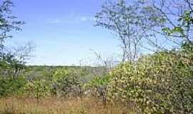 Tucuns - RPPN Serra das Almas em Tucuns por bekbra