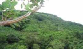 Uruburetama - Serra de Uruburetama, Por Cantinho da serra