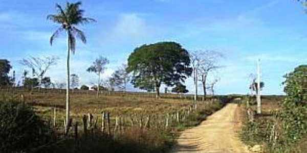 Serra da Mandioca-AL-Estrada do Povoado-Foto:JaloNunes f