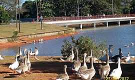 Brasília - Brasília-DF-Parque da cidade Sarah Kubitschek-Foto:Josue Marinho