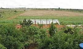 Brazlândia - Brazlândia-DF-Campo de plantação-Foto:Jefersonfotu