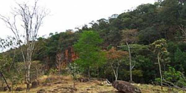 Gama-DF-Parque Ecológico Prainha-Foto:noticiasdogama.com