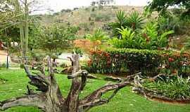 �guia Branca - �guia Branca-ES-Jardim no Parque Municipal Recanto do Jacar�-Foto:Erick Aniszewski