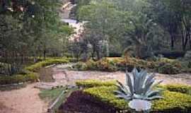 Barra de S�o Francisco - Jardim do Parque-Foto:Vanderley Silva