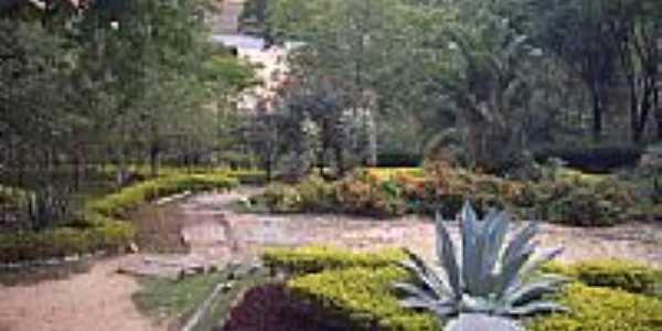 Jardim do Parque-Foto:Vanderley Silva