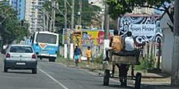 Carroça na Av.Luciano das Neves-Foto:Renato Ximenes