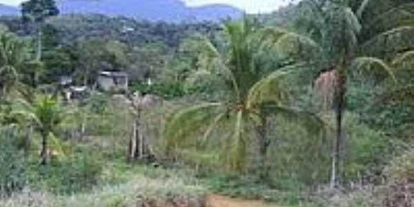 Área rural de Djalma Coutinho-Foto:Cuzzuol André