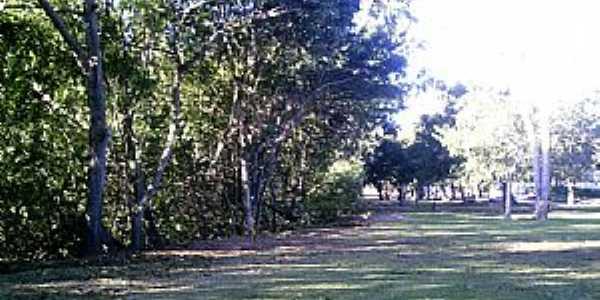 Goiabeiras-ES-Jardim da UFES campus Goiabeiras-Foto:www.ufes.br