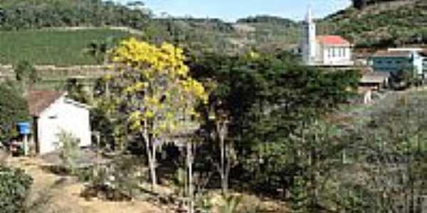 Ipe Amarelo em Melgaço-Foto:anivaldo kuhn
