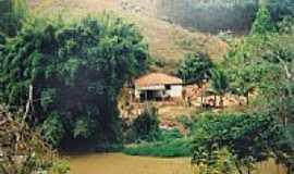 Palmeira - Área rural-Foto:D.Pino