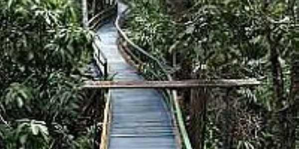 Ponte-Foto:flickr.com