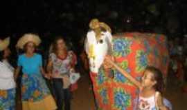 Santo Antônio do Muqui - A Vaca Mocha, Por Alci Santos Vivas Amado