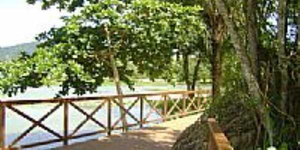 Jardim Bot�nico de Serra-Foto:Robson Scardini