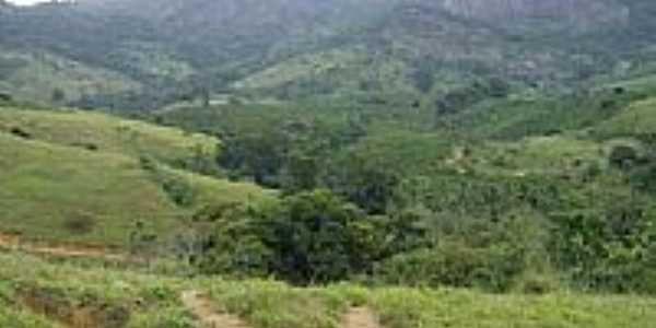 Vista da Montanha do Alto Laje-Foto:Nalvo