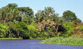 Barreirinha - Barreirinha-AM-Igarapé do Pucu-Foto:Baeturismo Barreirinha