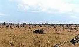 Adelândia - Vista da região-Foto:desciclo.pedia.