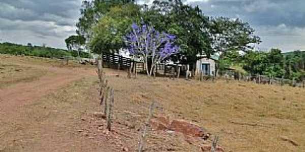 Água Limpa-GO-Paisagem rural-Foto:Reginaldo Moronte