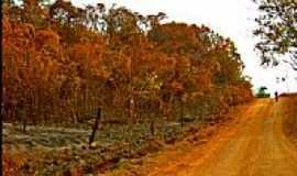 �guas Lindas de Goi�s - Cerrado vermelho em �guas Lindas de Goi�s-Foto:PauloHenriqueBwait