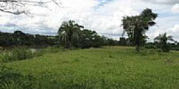 Vegetação ribeirinha do Rio Claro-Foto:tmorato