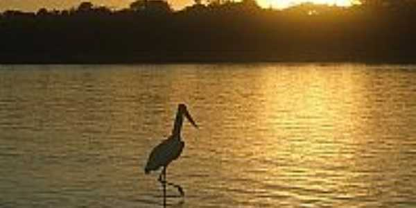 Pôr do Sol no Rio Araguaia em Bandeirantes-GO-Foto:BlogBandeirantes-GO