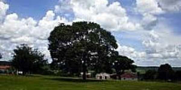 Casinhas em Barbosilândia-Foto:renarllydialogo.
