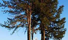 Caldas Novas - Pinheiros na entrada da Capela do SESC em Caldas Novas-GO-Foto:Joventino Neto