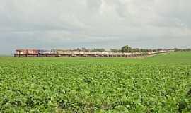 Caraíba - Caraíba-GO-Trem de carga da FEPASA/LFCA-Foto:Edinisio Gonçalves Pereira