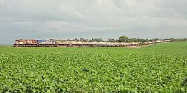 Caraíba-GO-Trem de carga da FEPASA/LFCA-Foto:Edinisio Gonçalves Pereira