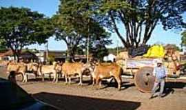 Caturaí - Carros de Boi-Foto:Eleusmario M. Rabelo