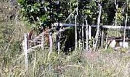 Chapad�o do C�u - Roda D��gua para capta��o-Foto:Rafael Jos� Rorato